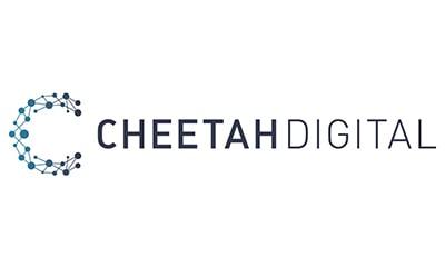 cheetah-min